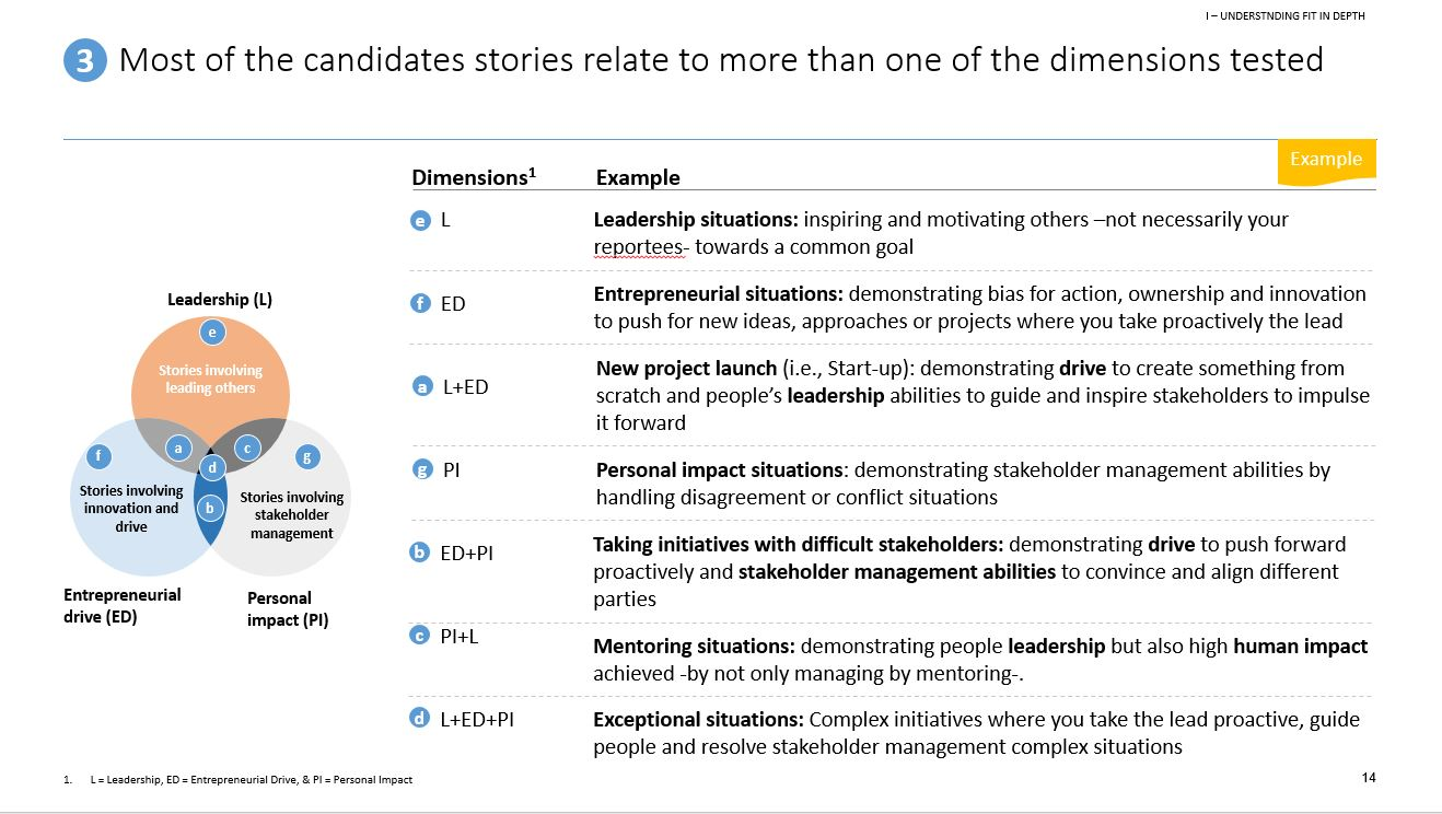 Overview McKinsey PEI dimensions