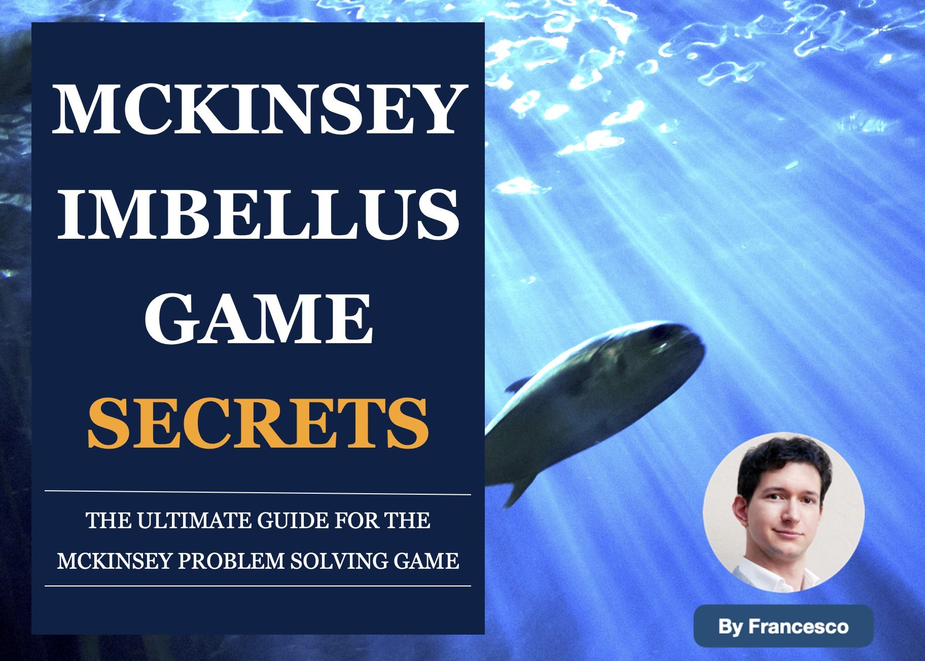 McKinsey Imbellus Guide by Francesco